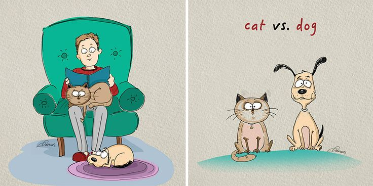 Cats Vs Dogs: 6 Differences Illustrated By Bird Born