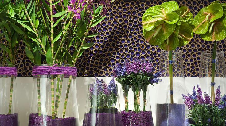 Lavendel in een modern jasje, gecombineerd met paarse kiezels van Mica