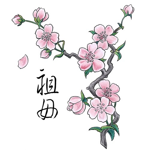 Cherry Blossom Tattoo - www.find-tattoo-d......