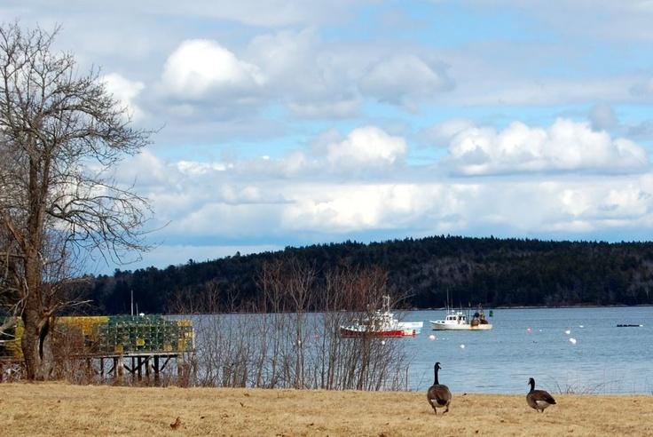 Cundy's Harbor, Harpswell Maine | Maine Coast | Pinterest | Maine