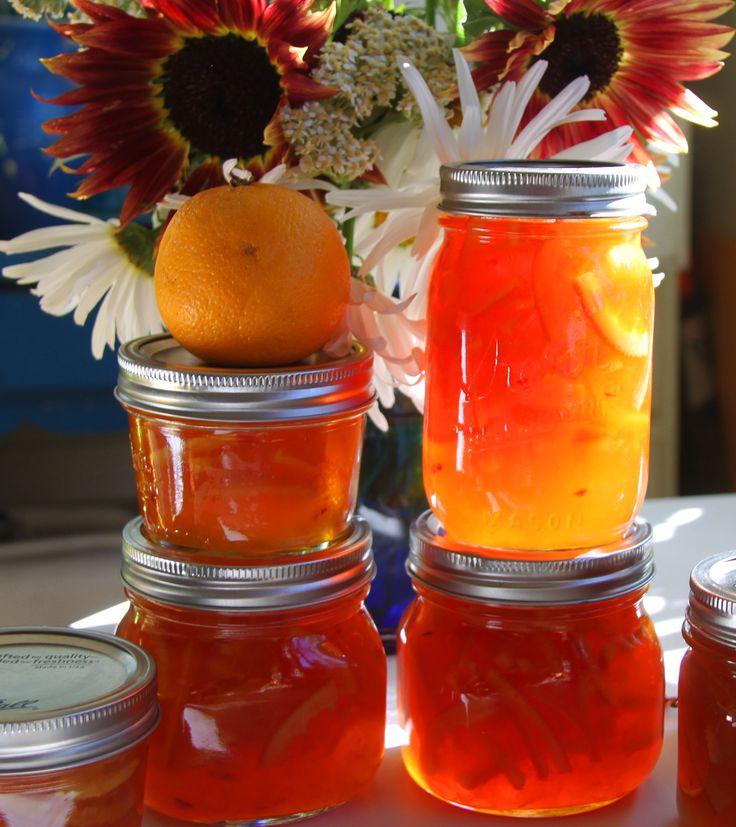 Blood Orange/Ginger Marmalade