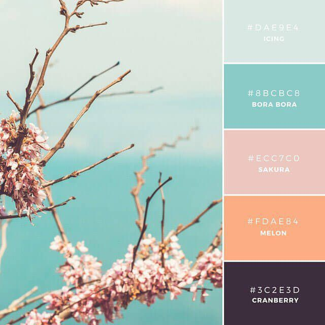 ◆Serene Sakura 寒色と暖色をうまく組み合わせた、フレッシュでモダンな配色が特長。ユーザーインターフェースデザインに最適な組み合わせ。サクラやサンゴをイメージさせる温かみのあるピンク色が、うまく青系トーンとのコントラストを描いています。