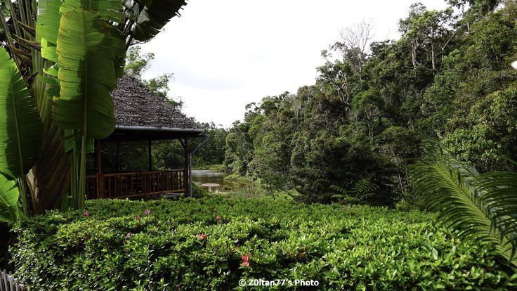 Si episodul 4 din ''prIn Madagascar'' #happytravelers #Madagascar  http://z0ltan77.com/2015/01/11/inapoi-in-tana-in-drum-spre-andasibe-si-in-paradisul-lemurilor/