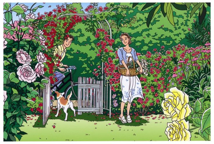 Amazon.co.jp: わたせせいぞう ポストカード 「White Old Roseの好きな人」(W00012): 文房具・オフィス用品