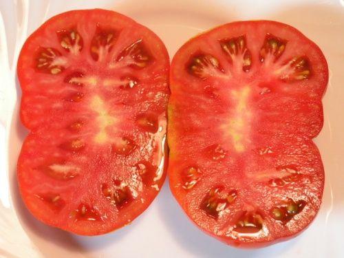 """Sybirskij Kozyr (""""Atut Syberii""""). Krzew teoretycznie (czyli zgodnie z tym co napisane na opakowaniu nasion) wysokości do 80cm, u mnie wyrósł na grubo ponad metr. Bardzo plenny, pomidory duże o masie ok.500g. Miałem go pod folią i w gruncie. Zdecydowanie w gruncie czuł się lepiej. Ciężar owoców powoduje konieczność solidnego podpierania rośliny. Roślina bardzo na wszystko odporna. Temperatura, choroby i kiepski ogrodnik (mówię tu o sobie) nie są w stanie przeszkodzić w plonowaniu. Pomidory…"""