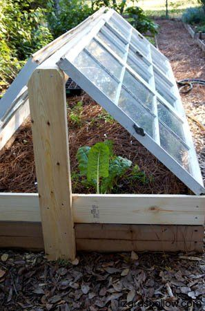 17 Best Ideas About Cold Frame On Pinterest Plastic Jugs Mr Nice Seeds And Indoor Lights