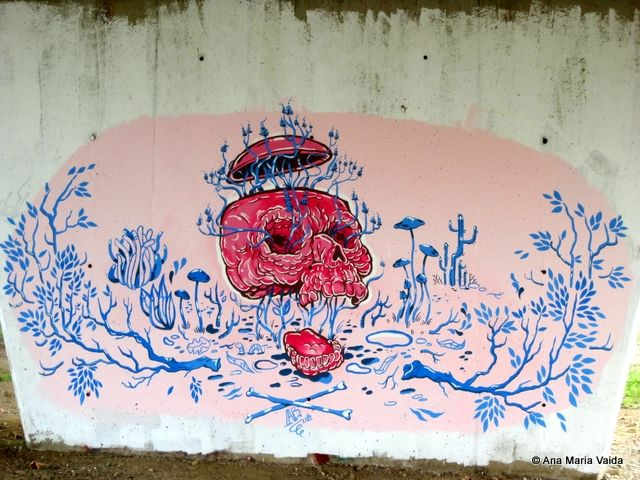 Street art Cluj