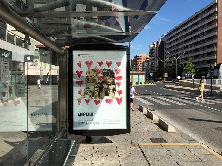 ADOPTAME !... Una campaña con mucho corazón para Logroño....