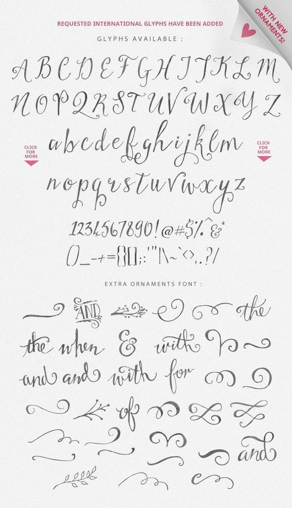 Stringfellows Typeface ~ Script Fonts on Creative Market #premium $20