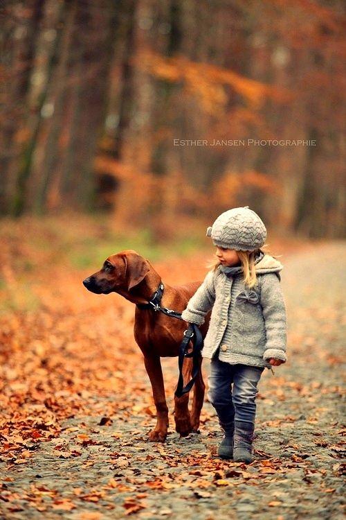 Autumn Walk ~ Visit amilassie.tumblr.com