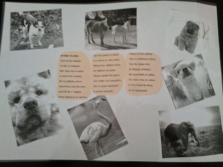 Έλα να παίξουμε...στο Νηπιαγωγείο!!!: Σουπλά για την Παγκόσμια Ημέρα Προστασίας των ζώων...