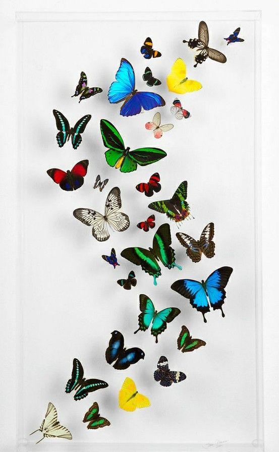 Steven Albaranes Butterfly Art #NMArtofFashion