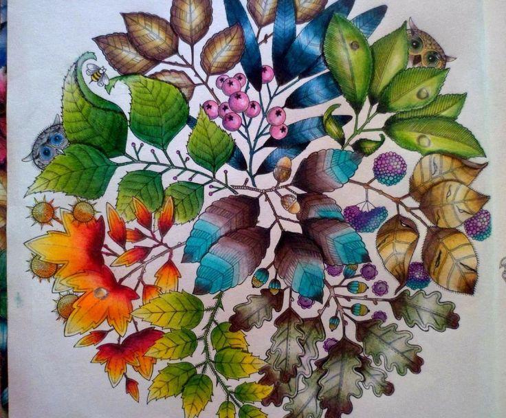 ideias jardim secreto: Owls Secret Garden. Mandala de Corujas Jardim Secreto. Johanna Basford