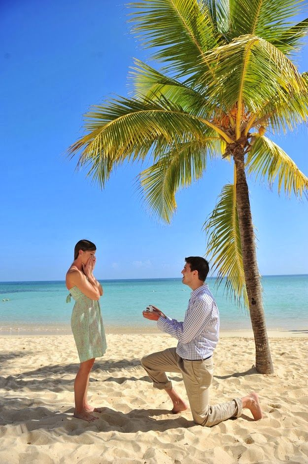 surprise proposal picture / engagement pictures