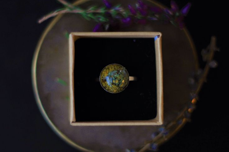 A personal favourite from my Etsy shop #lichen #ecoresin #silver #goldenforestboutique https://www.etsy.com/ie/listing/573350569/sterling-silver-lichen-ring-with-eco