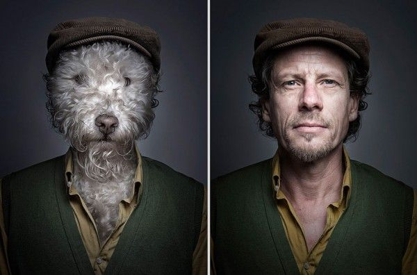 Dogs dressed like their owners by Sebastian Magnani