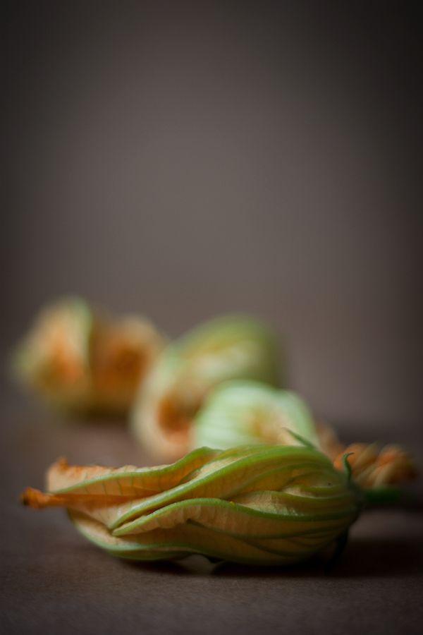 Kulinarna encyklopedia – Kwiaty cukinii