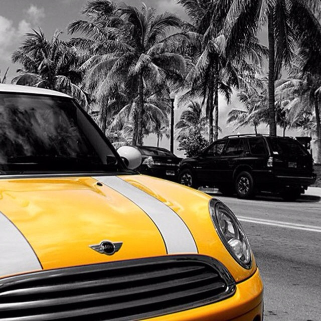 Own a yellow mini cooper (white racing stripes included!)