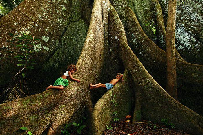Sumaúma...Brazil!--Just chillin' on one BIG tree!