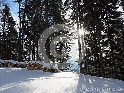 Winter - Download From Over 43 Million High Quality Stock Photos, Images, Vectors. Sign up for FREE today. Image: 65622725