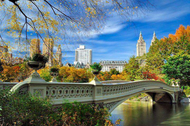 Специально для вас мы собрали 20 красивейших фотографий одного из самых знаменитых парков в мире – Центрального парка в Нью-Йорке (Central Park)