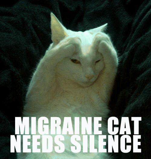 63ae7e69c86e0fc20db22a01e0a01c1c chronic migraines migraine headache 140 best migraine chronic headaches images on pinterest chronic,Chronic Illness Cat Meme