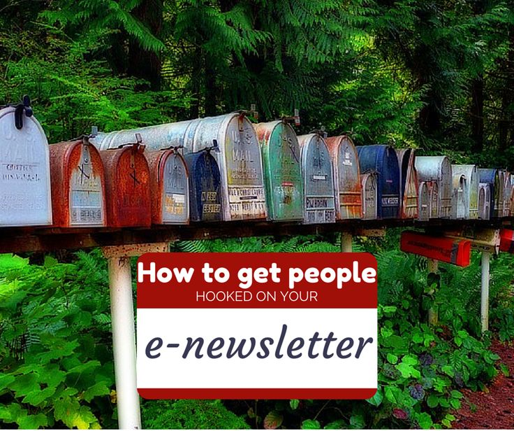 10 Steps to Your Killer E-Newsletter