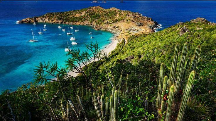 Saint-Barth, latypique des Caraïbes