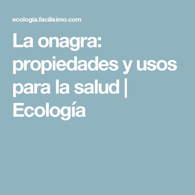La onagra: propiedades y usos para la salud | Ecología