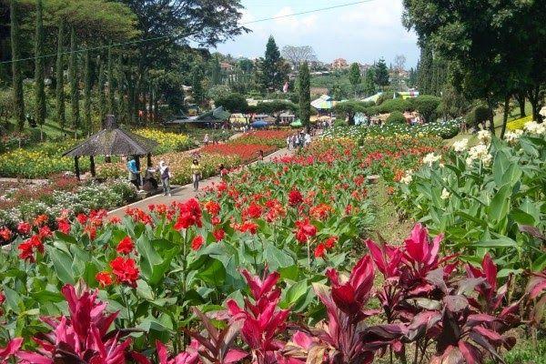 Taman Bunga Terindah Di Bandung