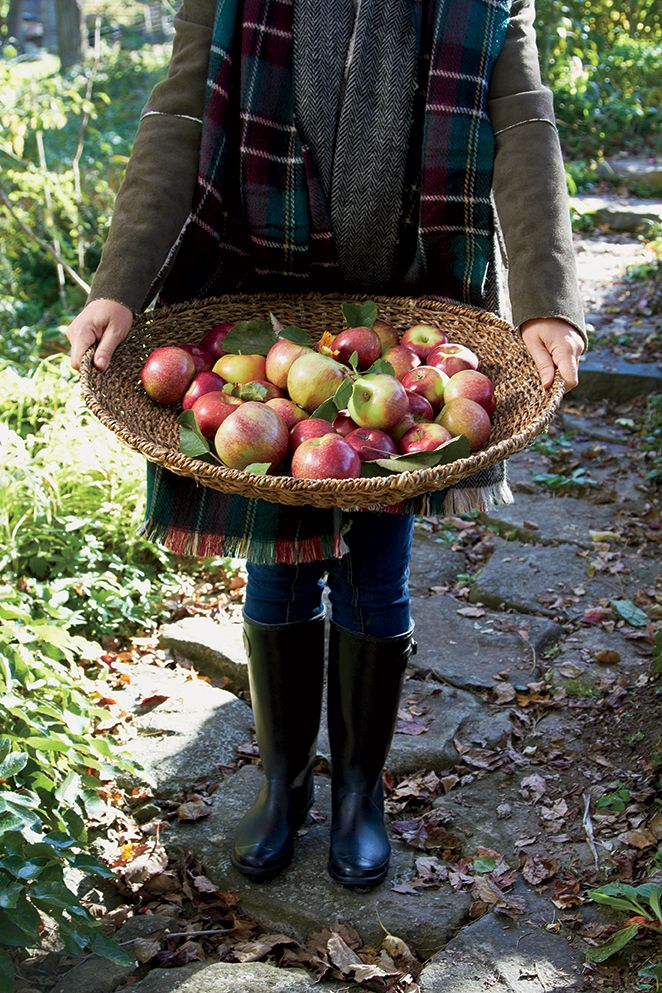 Autumnal offerings in our woven low bowl