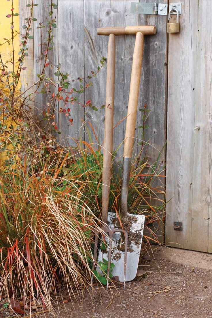 Fantastic What Gardening Zone Am I In Frieze - Brown Nature Garden ...
