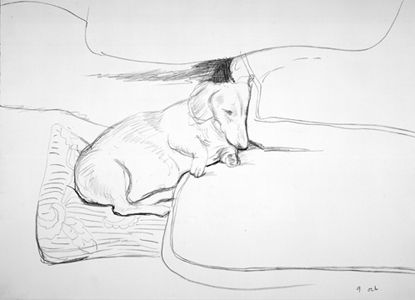 Boodgie, 1993 crayon David Hockney