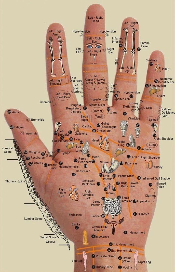 Jeder Körperteil ist an unsere Handfläche gekoppelt. Durch das Drücken auf die entsprechende Stelle, sollen Schmerzen im ganzen Körper gelindert werden.