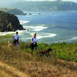 Coastal Hikes in Pacifica Beach, California