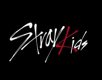STRAY KIDS MERCH ® in 2020 | Kids logo, Kpop, Logos