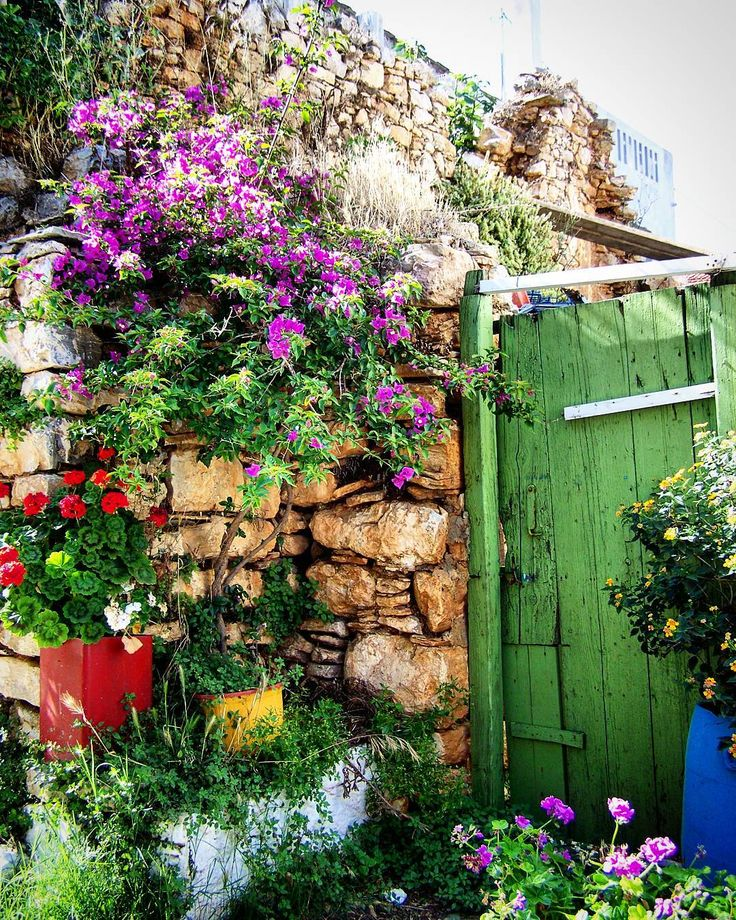 Walking along the narrow alleys of the old town (Chora) of Alonnisos.... I found a secret garden!