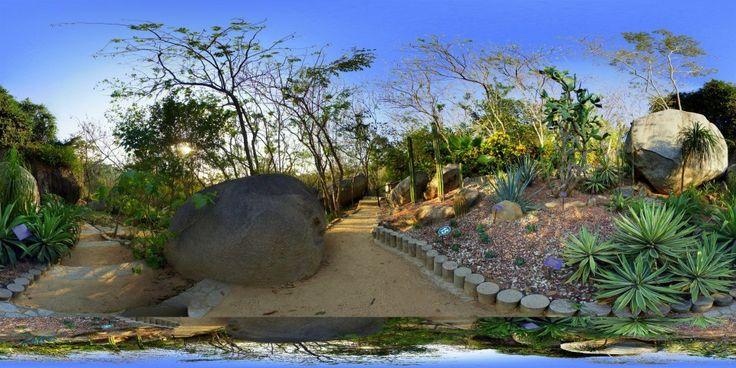 17 mejores im genes sobre jardines botanicos en pinterest for Jardin 7 17 acapulco