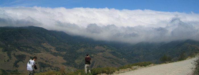 Monteverde: things to do