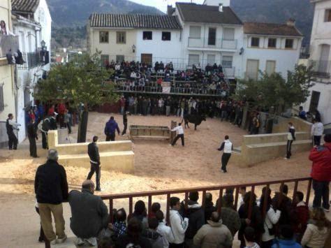 fuentes taurinas | cartel fiestas taurinas febrero 2011 gestalgar i concurso de ...