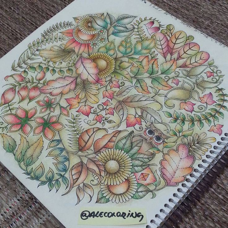 Regardez Cette Photo Instagram De Artecomoterapia O 721 Jaime Adult ColoringColoring BooksJohanna