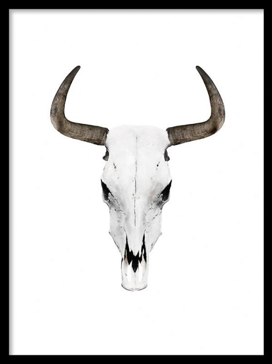 Snygg poster med buffelhorn. Trendigt och modernt print med horn. Svartvita posters och prints och tavlor. Affischer och planscher med buffelhorn.