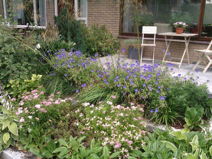 Siergras biedt wat privacy in deze mooie voortuin. Ontwerp en Beplanting door Enna Rörig Tuinontwerp + Beplantingsadvies