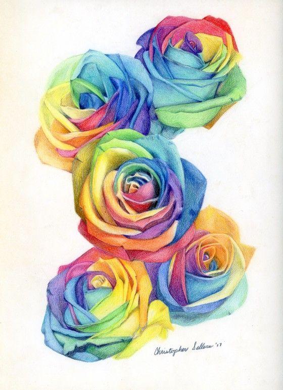 Rainbow Rose Drawing : rainbow, drawing, Rainbow, Tattoo, Style, Design, Roses, Drawing,, Drawing, Tattoo,