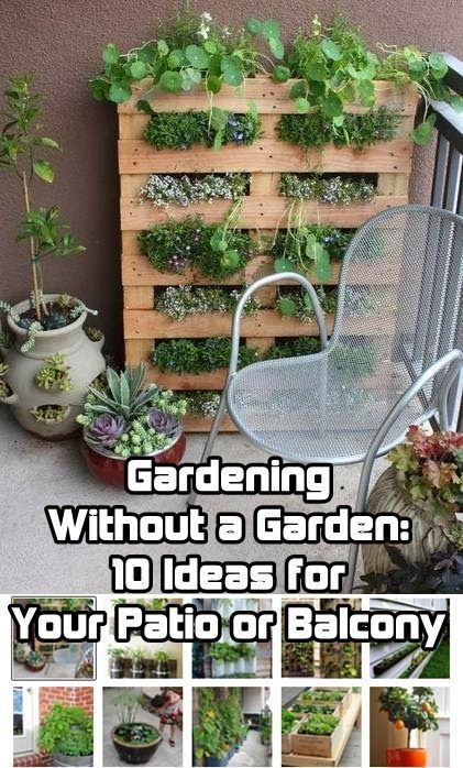 This article contains ideas for mini-gardens, including patios, balconies, etc. Gardening without a Garden.