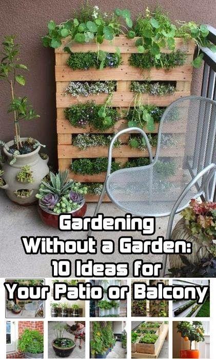 Mini Garden Ideas decoration craft ideas mini garden chair light rabbit wheel stones Gardening Without A Garden 10 Ideas For Your Patio Or Balcony