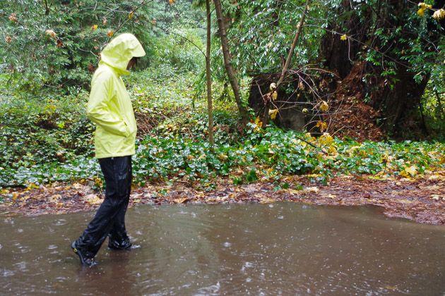 best everyday rain jacket--wirecutter reviews