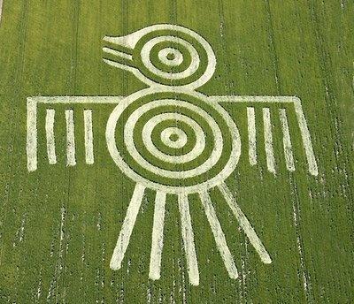 The Aztec Spirit Bird Crop Circle UK 2009 - Psychedelic Adventure
