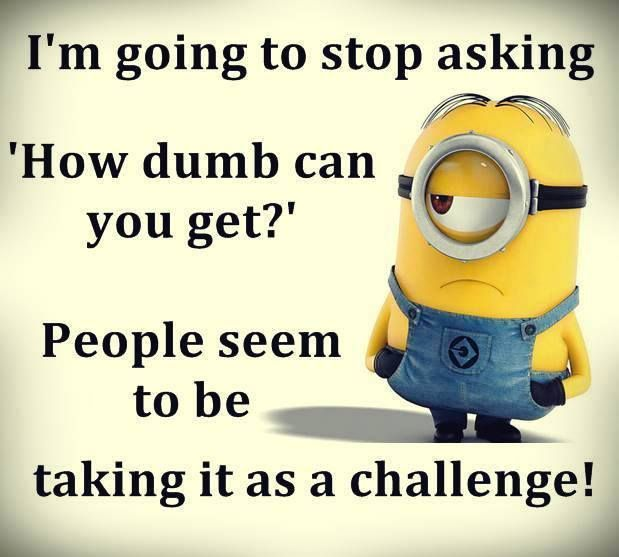 Iu0027m Going To Stop Asking U0027How Dumb Can You Get?u0027 People Seem To Be Taking  It As A Challenge! Minion S, Funny ...