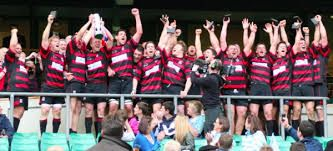 Image result for moseley rugby